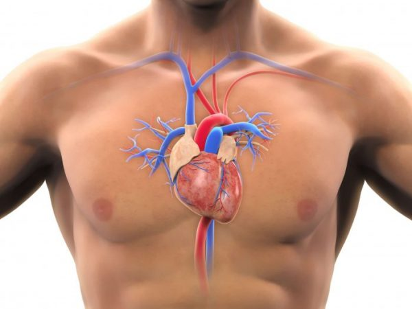 Coronary bypass surgery improves the blood flow to the heart and treats heart disease.