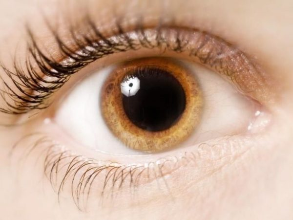 Popular eye surgeries include laser eye surgery, cataract surgery, and corneal transplants.