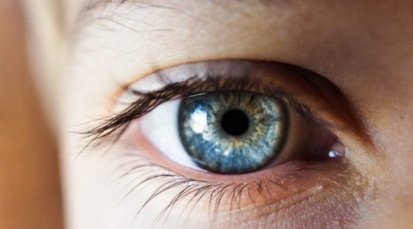 A detached retina is the separation of the retina from the supportive eye tissue.