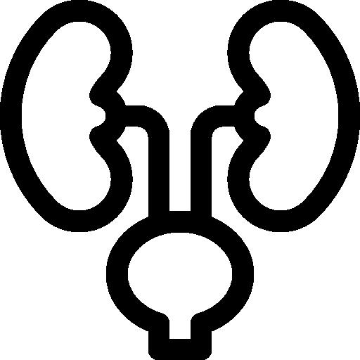 Üroloji